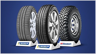 DISTRIBUIDOR EXCLUSIVO DE PNEUS MICHELIN E BF